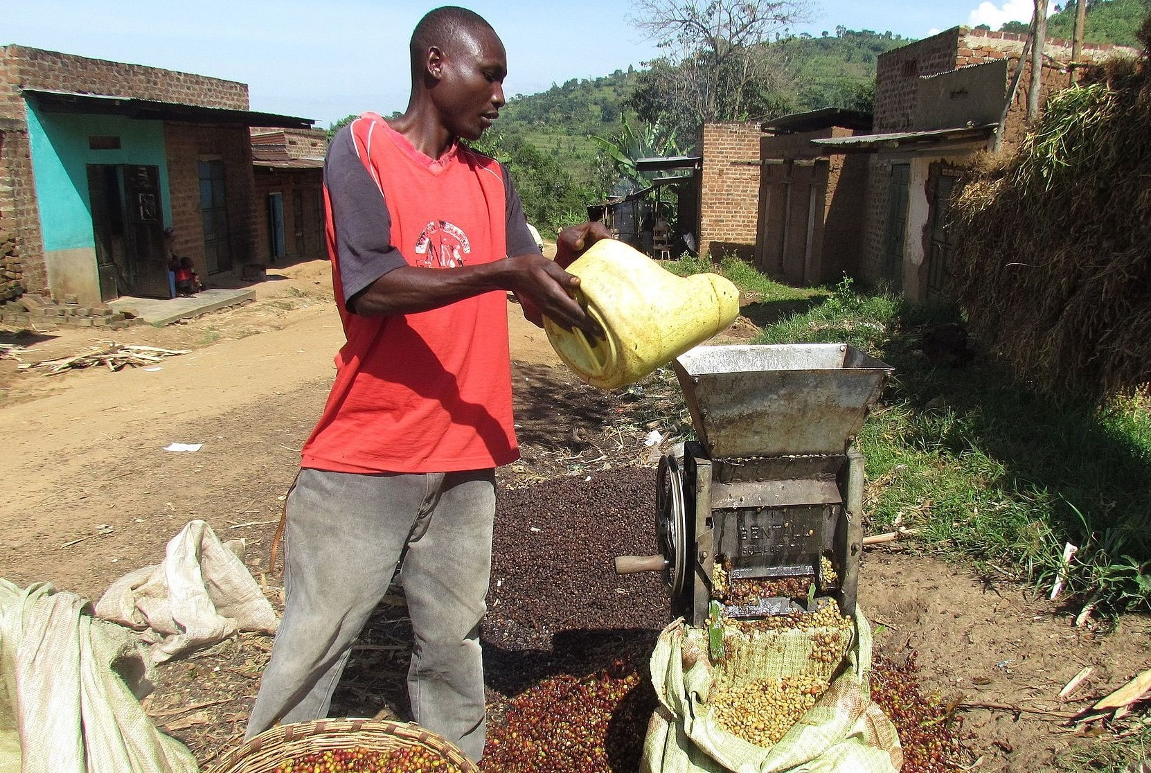 Smallholder Supply Chains in Africa